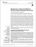 Modification of Bacterial Effector Proteins.pdf.jpg